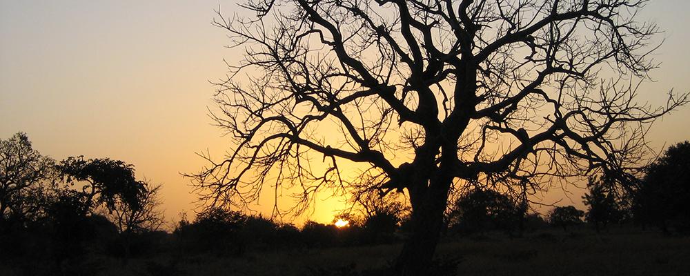 burkinafaso_IMG_2471_tramonto
